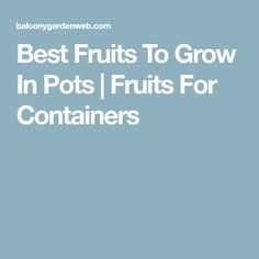 Best Fruits To Grow In Pots | Fruits For Containers