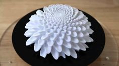 Blooming Zoetrope sculptures. Mesmerizing use of animation. http://www.instructables.com/id/Blooming-Zoetrope-Sculptures/
