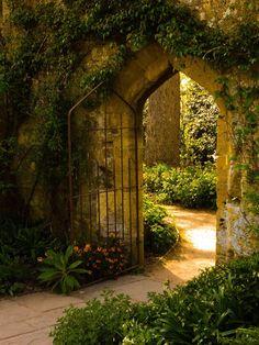 The secret garden - by Stephen Warner