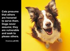 Cats presume that others are honored to serve them. Dogs never assume; they seek to please others.   From Michael Grinder's book: Charisma  Who would you like to share this quote with? Send it to that person.