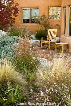 Xeriscape Ideas and designs for your yard and garden.