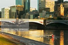 Rowers on the Yarra River -Melbourne, Victoria Melbourne Victoria, Victoria Australia, Other Countries, River, Country, Rural Area, Country Music, Rivers