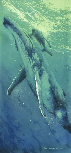 whales - painting