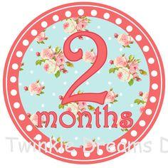 Baby Girl Monthly Onesie Shabby Chic Vintage Stickers  - Poppy coral orange Pink Blue Floral - onsie sticker
