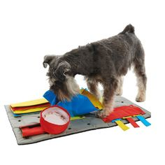 BUSTER Activity Mat Interactive Dog Toy - Starter Set with Three Tasks:::Looks like a fantastic option to keep your dog busy while your away! Stimulates and engages their minds to prevent unwanted behaviors and drain excess energy.  Also, great for puppy-human bonding!!!