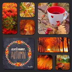 Autumn - Collage made by KaDK