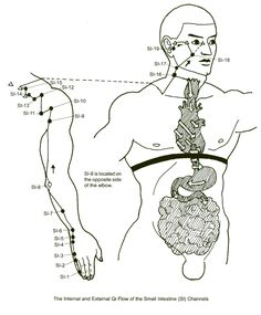 The Small Intestine Channel: Discernment, Sorting, Mental clarity – Acupressure Points Chart, Acupuncture Points, Acupressure Massage, Acupressure Treatment, Ayurveda, Traditional Chinese Medicine, Qigong, Massage Therapy, Alternative Medicine