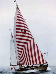 Red stripe sail #rufflesandrustsquare.com