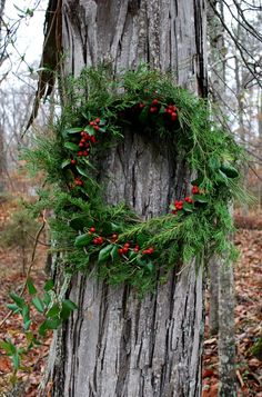 Winter Wreath for the Outdoors Natural Christmas, Noel Christmas, Primitive Christmas, Country Christmas, All Things Christmas, Winter Christmas, Christmas Wreaths, Christmas Crafts, Decoration Christmas