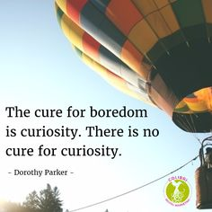 The cure for boredom is curiosity. There is no cure for curiosity.   #Curiosity #Creativity #Boredom #BeFree #Inspire #Motivation