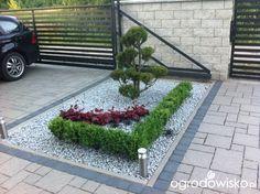 Mały ogród pod Białymstokiem - strona 33 - Forum ogrodnicze - Ogrodowisko House Gate Design, Diy Planters, Outdoor Landscaping, Topiary, Garden Art, Beautiful Gardens, Landscape Design, Backdrops, Sidewalk