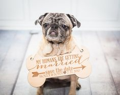 Pet Sign for Wedding Save the Date Engagement Photos - Save the Date Photography for Announcement for Dog, Wedding Pet Sign (Item - EPS100)