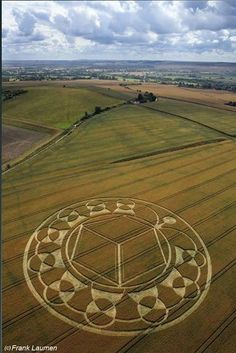 Crop Circle at Monument Hill, Devizes, Wiltshire United Kingdom. August-6-2013.