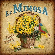 Láminas Decoupage by Bruno Pozzo Posters Vintage, Retro Poster, Vintage Labels, Vintage Postcards, Vintage Ads, Vintage Prints, Vintage Advertisements, Le Mimosa, French Images
