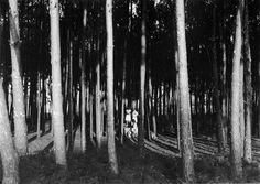 Mourisca, ca. 1928
