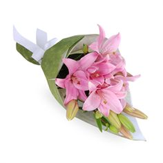 Penny - The Penny is a subtle yet stunning collection of fairy floss pink Asiatic lilies, hand-tied in a beautiful bouquet.