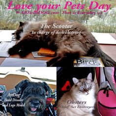 Happy National Love your Pet Day ~ That is Everyday at ARTwithDOG.com !   #dog #cat #k9 #feline #kitten #fluffy #himalayan #siamese #LoveYourPetDay #pet