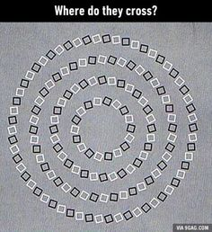 Take a look at this amazing Crossing Circles Illusion illusion. Browse and enjoy our huge collection of optical illusions and mind-bending images and videos. Brain Illusions, Optical Illusions Pictures, Funny Illusions, Illusion Pictures, Amazing Optical Illusions, Eye Tricks, Brain Tricks, Weird Facts, Fun Facts