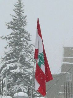 lebanese flag pictures