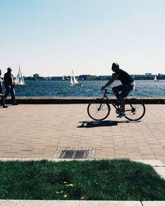 Summertime in the city  #strideby #bike #kiel #igerskiel #summer #sunshine #nature #sail #sailboat #sailing #ig_deutschland #ig_germany by blueasmyeyes