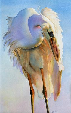 Fine art print of an original watercolor of a Great White Egret Preening. Museum-quality paper with archival ink.