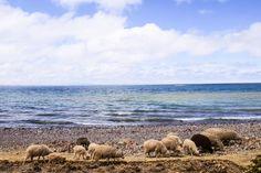 amantani island lake