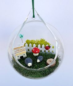 Pixie Glare Hanging Terrarium Hedgehog Garden Kit DIY Hedgehog Garden *** You can get more details by clicking on the image.