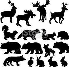 Silhouettes of woodland animals Royalty Free Stock Vector Art Illustration