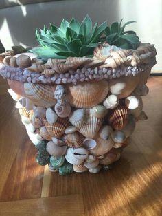 Seashell Art, Seashell Crafts, Beach Crafts, Clay Pot Crafts, Rock Crafts, Fun Crafts, Mosaic Flower Pots, Painted Flower Pots, Diy Craft Projects