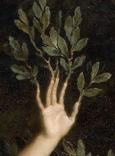 Extract from Apollo chasing Daphne, by René-Antoine Houasse, Regram … - Art Painting Aesthetic Art, Aesthetic Pictures, Aesthetic Painting, Aesthetic Outfit, Aesthetic Drawing, Aesthetic Clothes, Apollo Aesthetic, Aesthetic Plants, Witch Aesthetic
