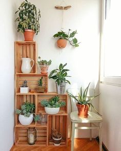Crates in my kitchen corner. Crates as plant stands. Crate construct… Crates in my kitchen corner. Crates as plant stands. Wood Crate Diy, Wood Crates, Wood Crate Shelves, Ikea Crates, Wooden Boxes, Crate Bookshelf, Wooden Sheds, Pallet Shelves, Wooden Crates With Plants