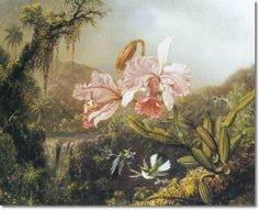 martin johnson heades painting of hummingbirds