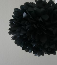 black poms are extremely dramatic. consider a good placement for one at home.