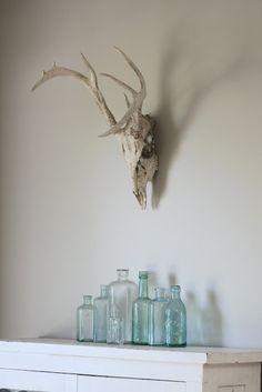 this is pretty boss - white deer skull and vintage blue bottles / farmhouse decor. Wonderful for all the skulls we have lying around! Deer Skulls, Deer Antlers, Animal Skulls, Apartment Therapy, Bedroom Nook, Bed Room, Blue Bottle, Oh Deer, New Home Designs
