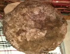 KARAKUL CAP Pakul Chitrali Pakol ethnic pashtun hat beret jinnah astrakhan massoud brown persian afghan camel color fur, Karakuli, Wool, New