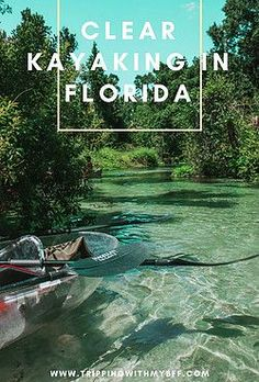 Kayaking Rock Springs in Clear Kayaks! – Tripping with my Bff Visit Florida, Florida Vacation, Florida Travel, Vacation Places, Vacation Trips, Dream Vacations, Vacation Spots, Day Trips, Travel Usa