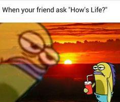 Damn Great Memes That Are Best Among Rest funny memes funnymemes lol rofl haha sarcasm viral humor humour 785878203710204748 Spongebob Memes, Spongebob Squarepants, Cartoon Memes, Dankest Memes, Funny Memes, True Memes, Funniest Memes, Stupid Memes, Funny Fails