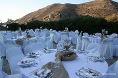 #wedding #starfish Sweet Memories, Athens, Starfish, Sea Shells, Wedding Day, Island, Table Decorations, Pi Day Wedding, Seashells