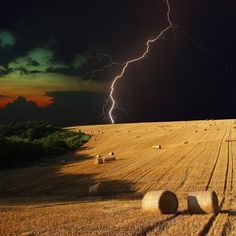 Lightning, dark sky and a sun covered field Image Nature, All Nature, Amazing Nature, Nature Pictures, Cool Pictures, Beautiful Pictures, Landscape Photography, Nature Photography, Fuerza Natural