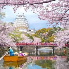 Himeji Castle, Hyogo, Japan - so amazingly beautiful it looks fake! Oh The Places You'll Go, Places To Travel, Beautiful World, Beautiful Places, Amazing Places, Himeji Castle, Kumamoto Castle, Japanese Castle, Japanese Palace