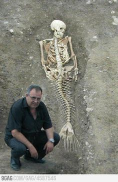 FOLKS -- THIS IS PHOTOSHOPPED   ShukerNature: MERMAID BODY FOUND? IN SEARCH OF FOLK WITH FINS -- it's a Worth 1,000 Words photoshop competition entry. https://www.snopes.com/photos/supernatural/mermaidskeleton.asp