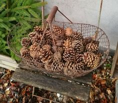 Outdoor Christmas Decorations, December, Basket, Xmas, Rustic, Garden, Anna, Home Decor, Advent