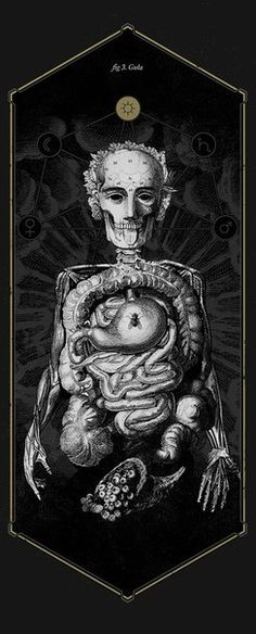 Анатомия греха Лючиано Корти (Mimetica) Чревоугодие