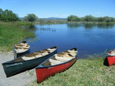 Image from http://www.roeoutfitters.com/app/webroot/userfiles/125/Photos/roe%20canoes.jpg.