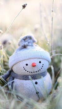 Snowman funny figure Snowman Emoji, Funny Snowman, Snowman Hat, Christmas Snowman, Christmas Ornaments, Snowman Quotes, Snowman Images, Snowmen Pictures, Snowman Wallpaper