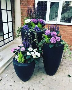 Potted: Luisa showcased her handy work and captioned the shot: All the pretties gardening pots entrance flowers'. Garden Cottage, Garden Pots, Potted Garden, Outdoor Potted Plants, Balcony Garden, Outdoor Pots And Planters, Outdoor Flower Pots, Plants In Pots, Best Potted Plants
