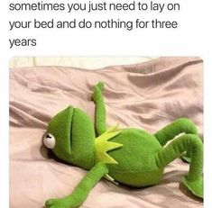 Funny Pics, Memes, Jokes and Videos. Funny Kermit Memes, Silly Jokes, Funniest Memes, Inappropriate Jokes, Hilarious Memes, Sarcastic Humor, Funny Humor, Funny Videos, Bodybuilding
