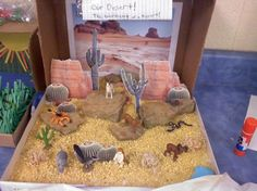 """Desert Diorama using Toob """"Desert"""" animals Ecosystems Projects, Science Projects, School Projects, Projects For Kids, Animal Projects, Desert Ecosystem, Desert Biome, Science Fair, Science For Kids"""