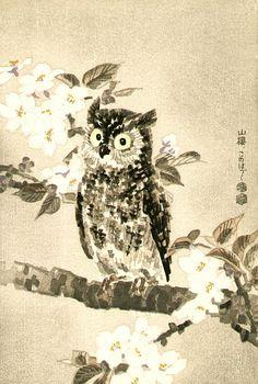 Kotozuka Eiichi (1906-1976) 琴塚英一 Owl and Cherry Blossoms, ca.1950′s