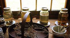Recept na jablečný ocet a šípkový likér